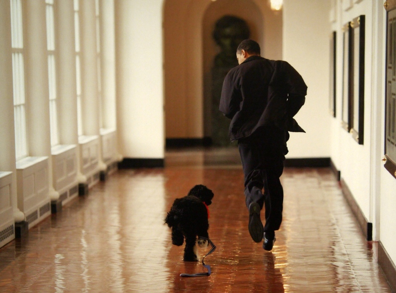 Barack Obama avec Bo
